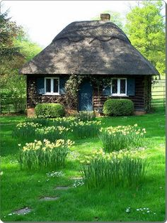 fairytale cottage, love the curving path n punche3s of daiseys