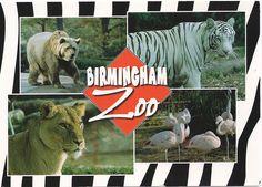 Birmingham Zoo in Alabama fun Road Trip Idea!
