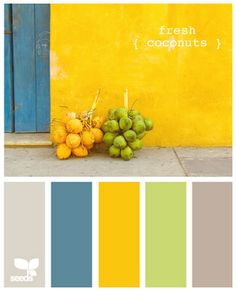 Kitchen inspiration: yellow, grey, teal for den- color scheme