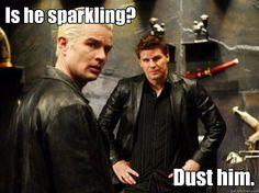 Spike and Angel-Buffy