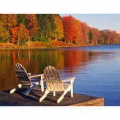 Maple trees in autumn.