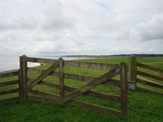 Zicht op West vanaf de Waddendijk
