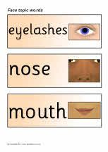 My face topic word cards - SparkleBox (Can be turned into a book using a card backing) Classroom Displays, Picture Cards, Heavenly Father, Activities, Words, Face, Trading Cards, Pictorial Maps, The Face
