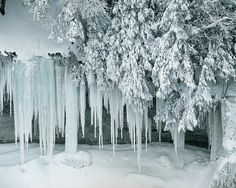 Beautiful Winter Scenery | Beautiful Winter Scenery | Nice Pictures