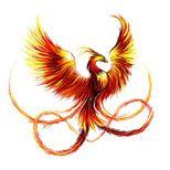 Phoenix bird tattoo design ...