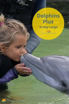 Kissing Dolphins at Dolphins Plus in Key Largo (Florida Keys) was an amazing experience to have with our kids!