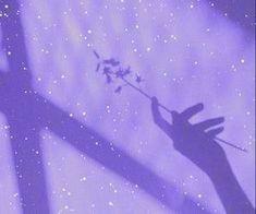 #violeta #sombra #feeds