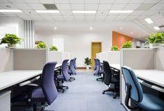 Un bureau de travail avec une décoration minimaliste et des plantes vertes