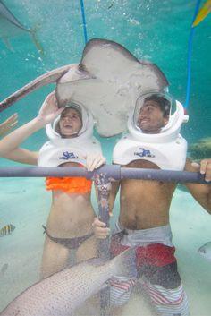 ¡Sorpréndete con la maravillosa aventura que te espera en la Riviera maya con Sea Trek!