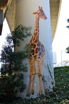 """Giraffe - Dan Fontes: Iin 1983, the city of Oakland, CA contracted with Dan Fontes to create 7 giraffe designs to be installed under the freeway.This 32"""" giraffe is on a support pier of the 580 freeway."""