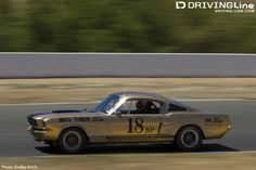 SCCA Trans Am Road Race Car, Race Cars, Trans Am, Mustangs, Pony, Racing, War, America, Club