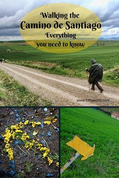 All of your basic questions about walking the Camino de Santiago answered! Camino Way, The Camino, Oh The Places You'll Go, Places To Travel, St James Way, Future Travel, Spain Travel, The Great Outdoors, Trip Planning