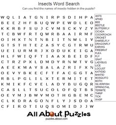 Animal Word Search Games in Large Print: Insects  Word Search