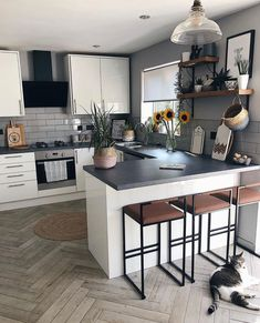 Kitchen Room Design, Modern Kitchen Design, Kitchen Layout, Home Decor Kitchen, Kitchen Living, Interior Design Kitchen, Kitchen Furniture, Home Kitchens, Small Galley Kitchens