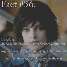"""389 Synes godt om, 2 kommentarer – Twilight Facts (@twilightfactss) på Instagram: """"~ Emma Watson got a doll made after her for doing Beauty and the Beast, but Amy Adams never got a…"""""""