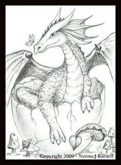 Adults pages dragon coloring