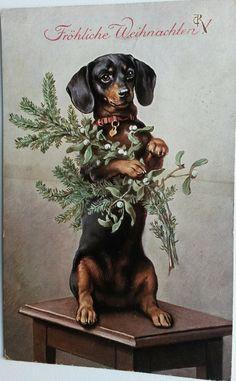 Vintage postcard Dachshund Christmas tree branch # 2 by Reichert