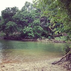Barton Springs - Swimming hole!