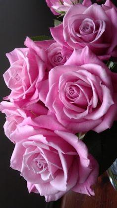 #Pink #Addiction ♥ TGIF ✿ڿڰۣ( ✯nyrockphotogirl ✯✯ Love