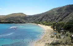 Hanauma Bay, Ohau, Hawaii.  Hope I get to go back one day!