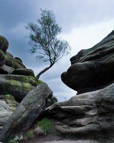 Brimham Rocks, North Yorkshire, England