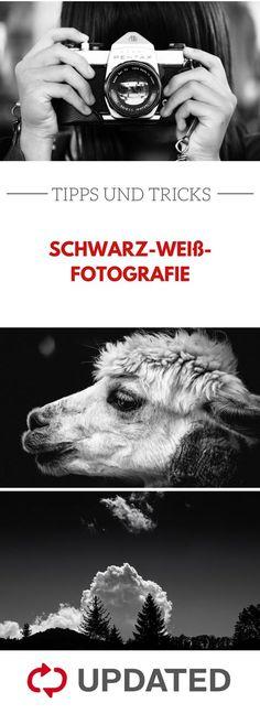 Kontraste richtig nutzen und Motive perfekt in Szene setzen - das ist bei schwarz-weiß-Fotografie besonders wichtig. Mit diesen Tipps gelingt es dir! #schwarzweiß #fotografie #updated
