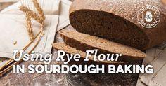 Using Rye Flour In Sourdough Baking