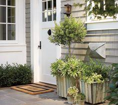 I like:  Light shade of gray siding White trim Green plants