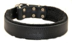 Dean and Tyler DT DELIGHT Leather Dog Collar with Felt Padding and Strong Hardware  Black  Size 20 by 112  Fits Neck 18 to 22 >>> You can get additional details at the image link.