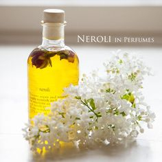 Neroli oil is an essential oil produced from the blossom of the bitter orange tree (Citrus aurantium subsp. amara or Bigaradia). Its scent is sweet, honeyed and somewhat metallic with green and spicey facets. Orange blossom is also extracted from the same blossom and both extracts are extensively used in perfumery. Orange blossom can be described as smelling sweeter, warmer and more floral than neroli... Read more on http://on.fb.me/1N5airy, To know more about us, please visit…