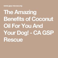 The Amazing Benefits of Coconut Oil For You And Your Dog! - CA GSP Rescue