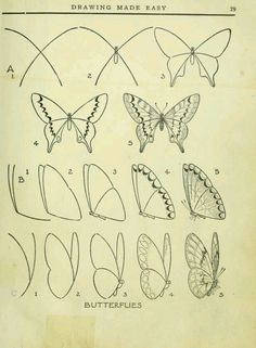 Schmetterling zeichnen / 40 Easy Step By Step Art Drawings To Practice - Bored Art Sketch Art, Drawing Sketches, Drawing Ideas, Sketching, Designs For Drawing, Art Inspiration Drawing, Designs To Draw, Design Inspiration, Design Ideas