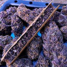 Beautiful purple!! ;-)