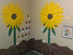 Miss Wulff's World--seed display and parts of a plant