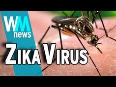 Dr Mercola: Pandemic Outbreak Propaganda Machine Takes Aim at Zika Virus