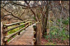Dos Picos Park Bridge - Ramona, CA - Craig Stilson Paintography Ramona California, San Diego City, Bridge, Destinations, To Go, Photoshoot, Wedding Ideas, Memories, Vacation