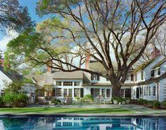Sawyer Berson Hook Pond pool and tree