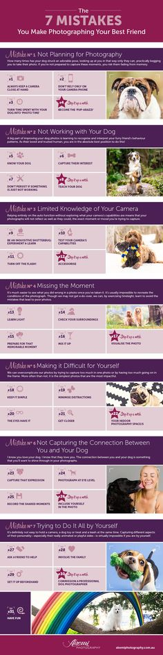 Free eBook & Infographic ~ The 7 Mistakes You Make Photographing Your Dog & the 30+ tips to your best dog photos yet!