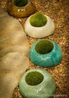 moss and stones, the glaze would reflect the moon light in a moon garden. moss and stones, Moss Garden, Garden Stones, Farm Gardens, Outdoor Gardens, Container Gardening, Gardening Tips, Healthy Tips, Healthy Recipes, Terrarium Plants