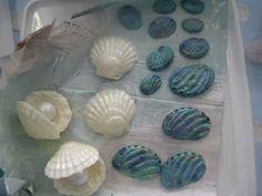 Kiwi Cakes: My Operation Sugar cake for Katie - close up of scallop shells and paua. Pearl is a giant gumball
