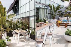 Una terraza elegante con vegetación rústica  Mesa adaptada a exteriores ($8.518) y sillas ($2.023 c/u, todo de Fauna), modelo 'Tolix', en su versión de hierro blanco con tapa de madera. Sobre el plato hondo ($310) blanco salpicado de azul, un pequeño cuenco ($180, todo de Francis Bazar).  /Magalí Saberian