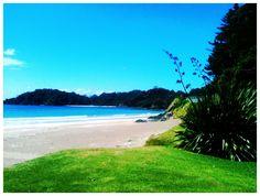 Woolleys Bay looking over to Whale Bay, Tutukaka Coast, Northland, NZ Kiwiana, Homeland, New Zealand, Whale, My Photos, Coast, Heaven, Ocean, Country