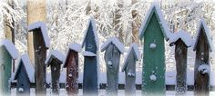 birdhouse fence made from slab wood. Too cute