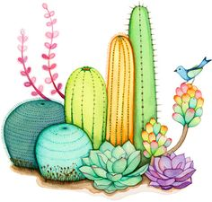 probably the only time you will think that cacti are beautiful