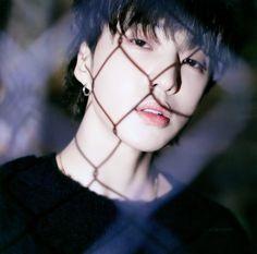 Seungyoon Winner, Winner Kpop, Kang Seung Yoon, Song Mino, Win My Heart, Yg Entertainment, Ikon, Photo Book, Boy Groups