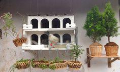 White Pigeon Birdhouse Garden