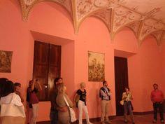La sala rosa del castello di Castelnovo #castelli #piacenza #emiliaromagna #valtidone #turismo