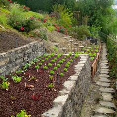 raised beds built with stones