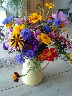 Simple Flowers, Beautiful Flowers, Hanging Baskets, Flower Vases, Flower Power, Floral Arrangements, Cool Pictures, Floral Wreath, Bouquet