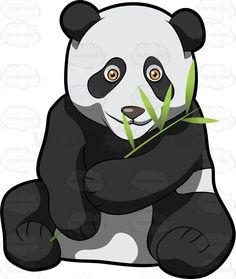 #adorable #Ailuropodamelanoleuca #animal #animalkingdom #bamboo #bamboobear #bearcat #big #black #blackears #branch #carnivora #catfoot #china #content #contented #coonbear #cuddly #cunning #cute #eat #eating #endearing #eyepatches #fat #felicitous #fleshly #giantbearcat #giantpanda #glad #grass #grasses #greens #happy #heavy #herbivore #herbivorous #hug #huge #hugging #leaf #leaves #lovable #love